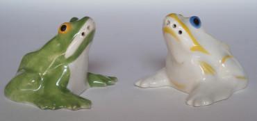 Saleron grenouilles par Sandoz